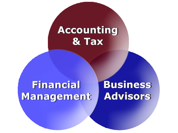 Accounting/Audit firm